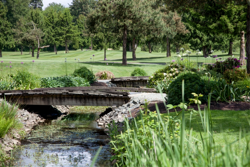 Fort Langley Golf page feature pic